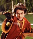 Harry during Quidditch